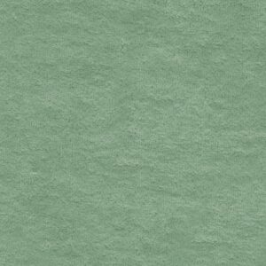 Badstof groen C. Pauli - Knitted terry cloth green bay Biologische Badstof